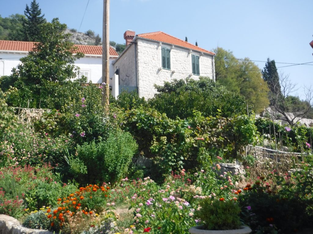 Dubrovnik old Villa close to Dubrovnik with privacy and view